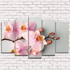 Модульная картина на холсте Орхидеи